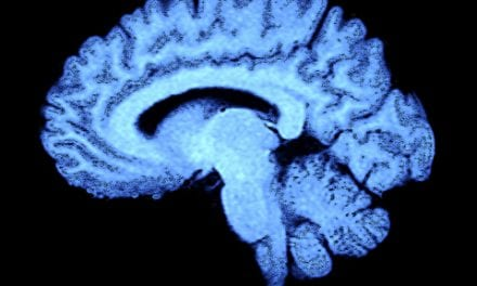 Brain Differences Revealed Between 'Early Risers' and 'Night Owls'