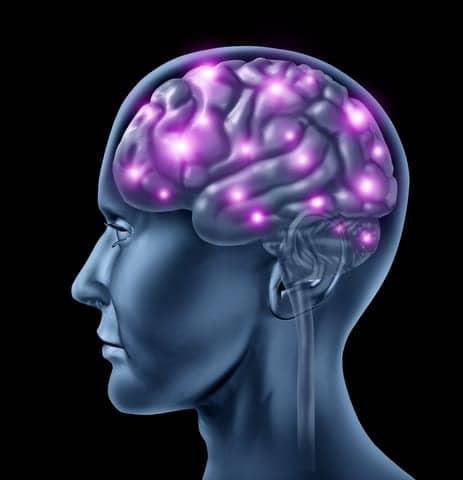 How Sleep Nutures Your Brain