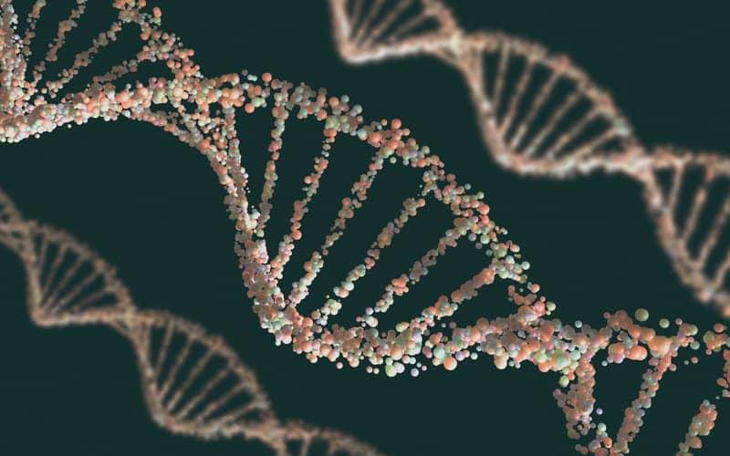 Insomnia-associated Gene Regions Suggest Underlying Mechanisms, Treatment Targets