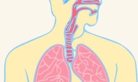 How the Brain Generates Respiratory Rhythm
