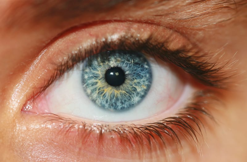 Scientists Measure Eye Pressure of Sleeping Patients to Find Link Between OSAS and Glaucoma