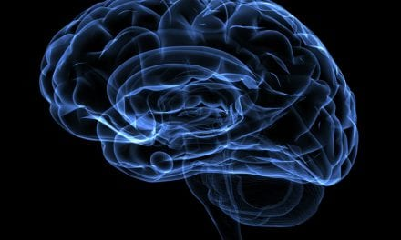 Scientists Map Brain Cell Activation During Sleep