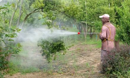 Could Pesticides Be Disrupting Our Sleep?