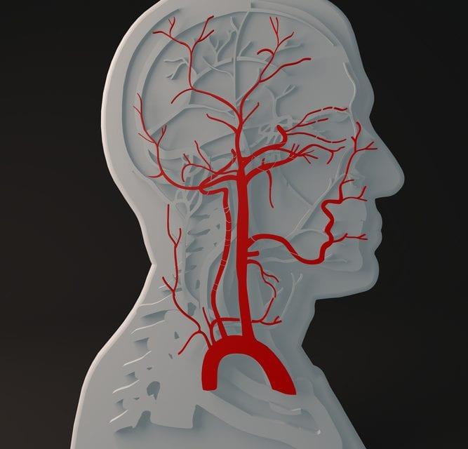 "Regulating ""Gasotransmitters"" Could Improve Sleep Apnea Care"