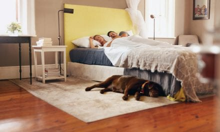 Mayo Clinic Study: Dogs in Bedroom Don't Negatively Impact Sleep