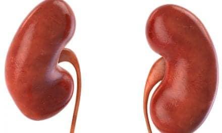 Observed Link Between Sleep Apnea and Kidney Disease Risk May Be Due to Obesity