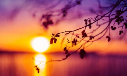 New Findings Shed Light on Early-evening Agitation Known As Sundowning