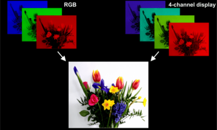 New Technology Could Fix Melatonin-suppression Problems of Smartphones While Keeping Colors True