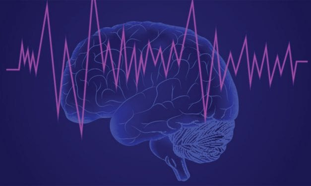 The Brain Shows Sleep-Like Activity When the Mind Wanders, Study Finds