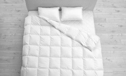 Review: The ChiliPad Sleep System