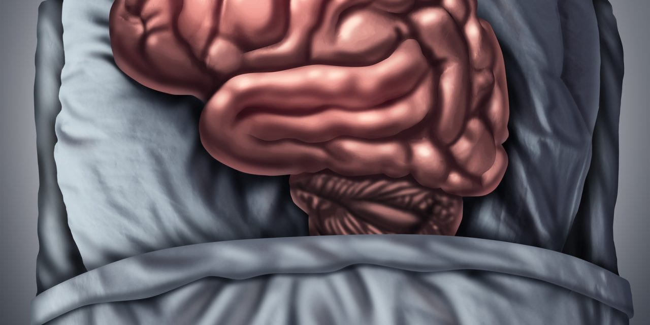 Feeling Tired? Here's How the Brain's 'Hourglass' Controls Your Need for Sleep