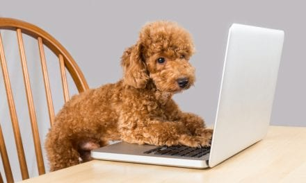 Developing Your Webside Manner [Editor's Message]