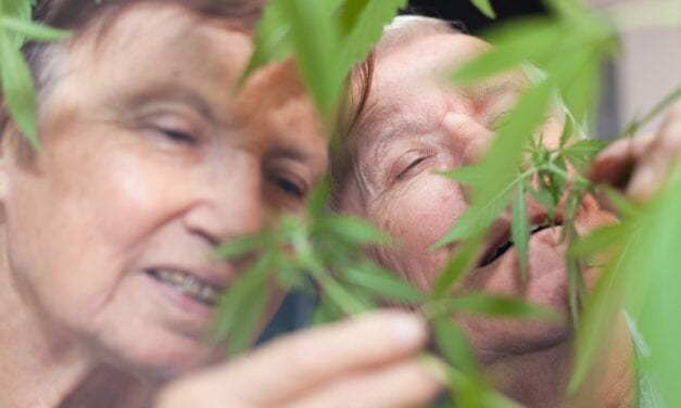 Older Adults Using Cannabis to Treat Insomnia