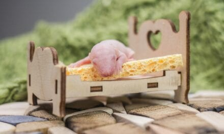 Cellular Energy Metabolite Decreases During Non-REM Sleep & Profoundly Decreases During REM, Finds Mouse Study