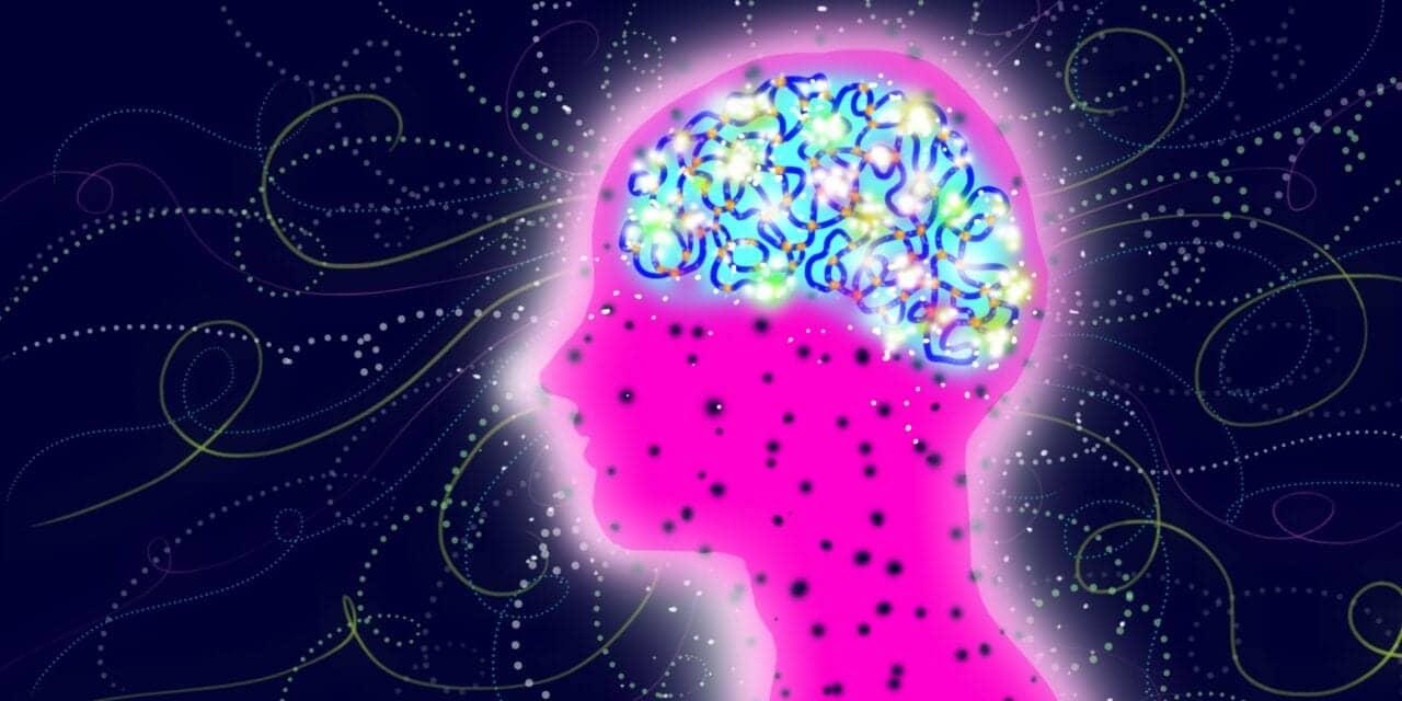 Washington University Researcher Awarded $1.8M to Study Sleep's Contribution to Brain Function