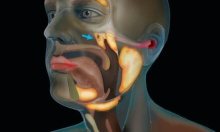 Researchers Accidentally Find Previously-Unknown Gland in Back of Nasopharynx