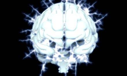 Pre- and Post-Epileptic Spasm Brain Resembles the NREM Sleep Brain on EEG