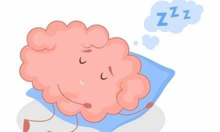 How the Fruit Fly Brain Senses the Need for Sleep