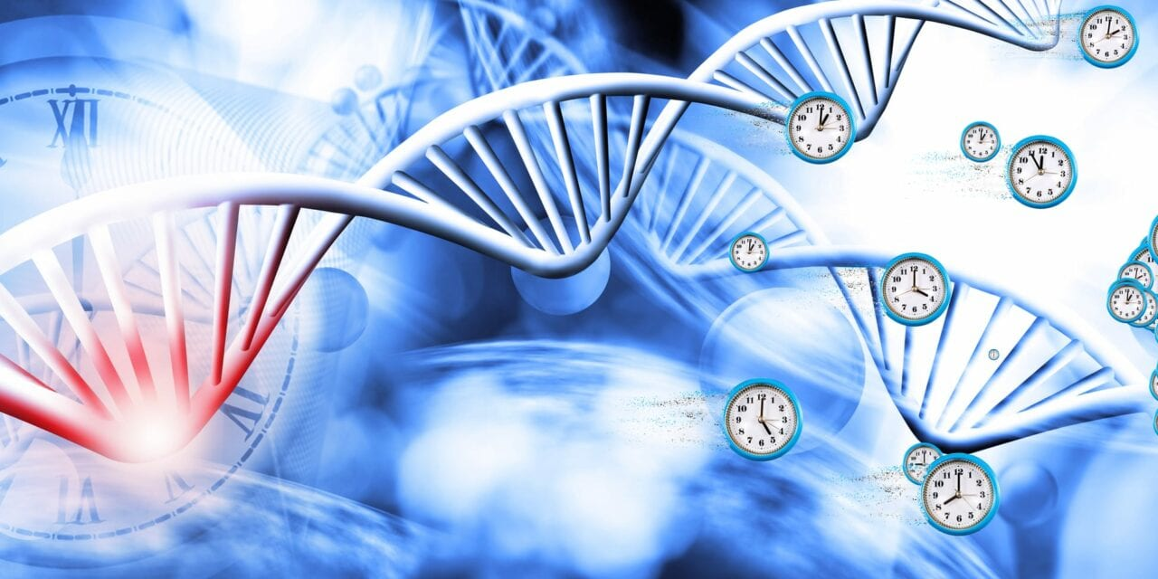 Sleep Disorder Linked with Shift Work May Affect Gene Function